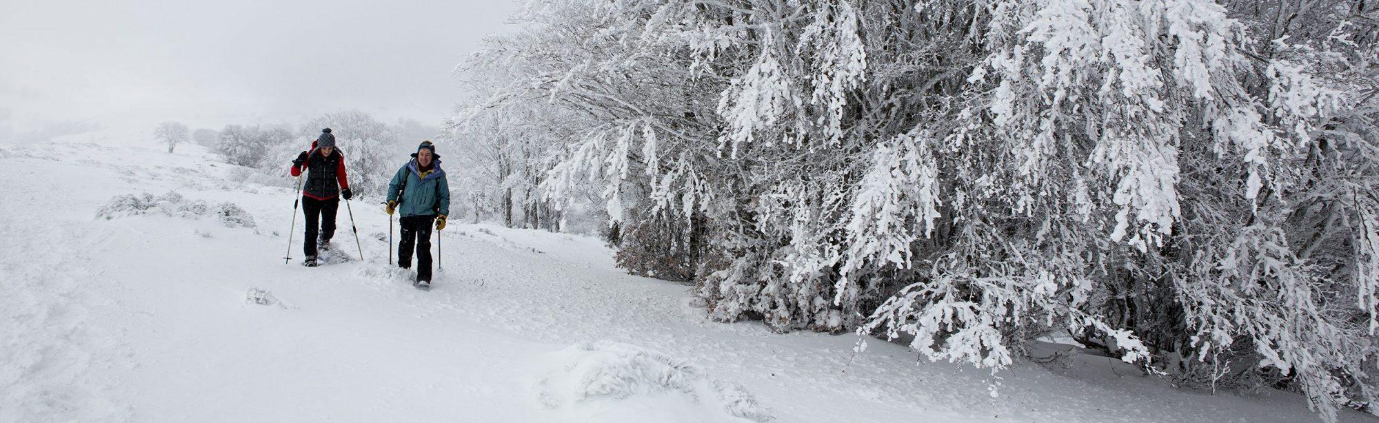 Randonnée en raquettes à neige. Photo ©Pierre Soissons