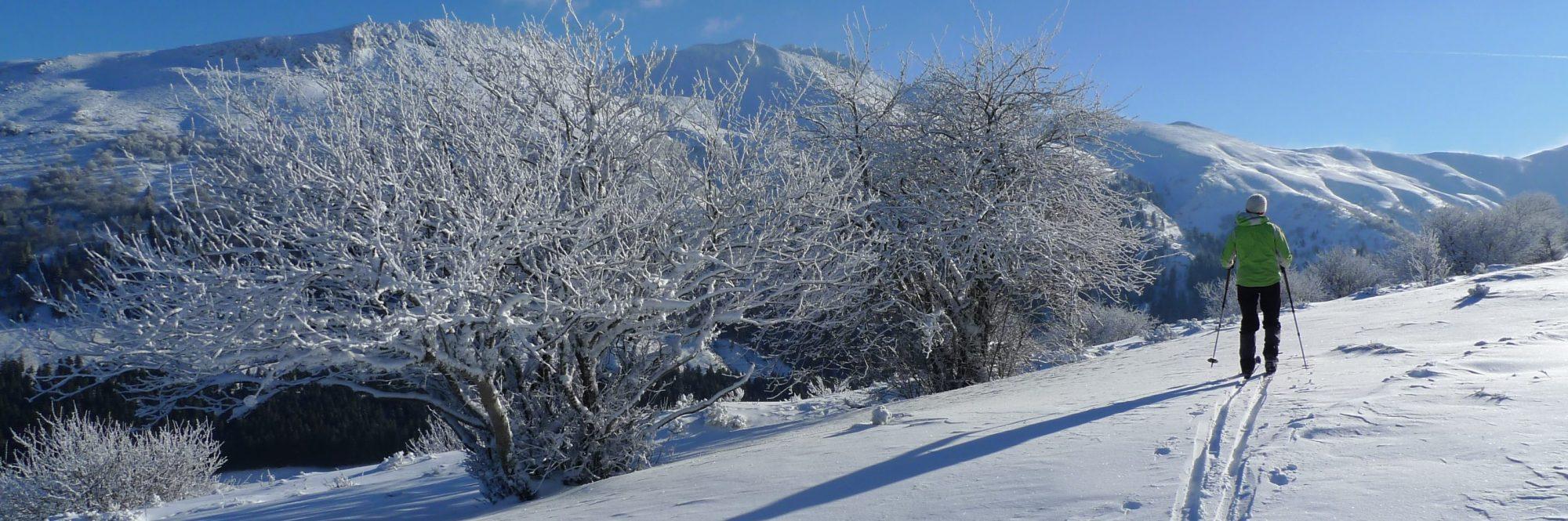 Activité hivernale: ski nordique au col de Serre. Photo ©Alta Terra